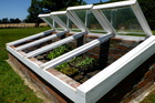 Seedlings can be kept warm in a coldframe, above, or under a polythene cloche. Photo / Meg Liptrot