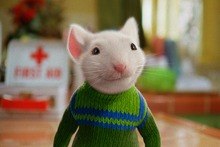 The mouse shown in the episode of The Ridges appeared to be a very distant cousin of the famous Stuart Little. Photo / Supplied