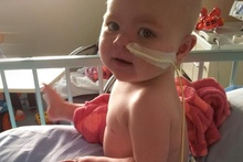 Two-year-old Sativa, who was diagnosed with acute lymphoblastic leukaemia when she was four-months-old, has been given just weeks to live. Photo / supplied