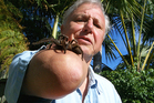 David Attenborough says TV nature commentators like himself will soon be extinct. Photo / Supplied
