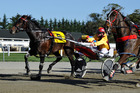 Franco Ledger proved too strong in the Hannon Memorial, the feature race at Oamaru yesterday. Picture / Otago Daily Times