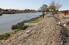 The young engineers came up with a plan to repair the Avon river stopbanks. Photo / Geoff Sloan