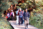 Auckland Airport hopes to push Japanese tourist numbers towards 100,000 per year. Photo / APN