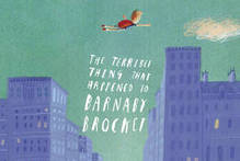 Book cover of The Terrible Thing That Happened To Barnaby Brocket. Photo / Supplied