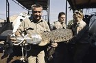 The Northern Territory Crocodile Management Unit in action. Photo / Supplied