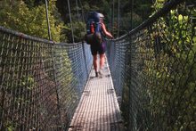 The suspension bridge over the Falls River is a highlight of the Abel Tasman Track. Photo / Rika Milne