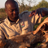 Ranger Juluka Chauke with a skull of a rhino killed by poachers. Photo / P.K Stowers