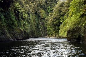 Time and time again I return to our stories, our life shared in and around the Whanganui River, our way of life. Photo / APN