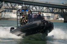 The meeting of amphibious boat-maker Sealegs was a shambles. Photo / APN