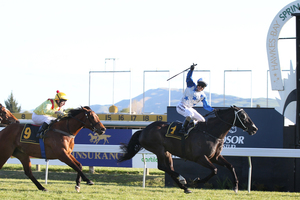 This is how you win your 10th group one. Mufhasa finishes well clear of Fleur de Lune and Xanadu in the Windsor Park Plate at Hastings. Photo / APN
