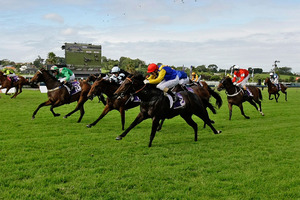 Warhorse (blue and yellow colours), pictured in the Diamond Stakes which he won on a protest, will be seeking an Ellerslie double in the Bonecrusher Stakes tomorrow.Picture / Sarah Ivey