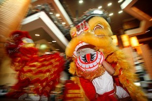 A spectacular and noisy traditional Lion Dance marks Chinese New Year festivities yesterday at SkyCity in Auckland. Photo / Natalie Slade