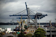 Over the past 20 years, container volume growth has averaged 6.74 percent. Photo / Dean Purcell