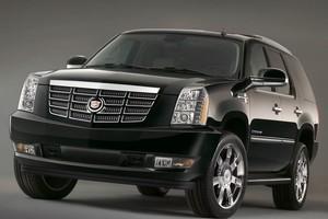 Cadillac Escalade. Photo / Supplied