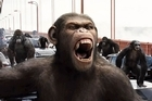 Weta Digital's work on Planet of the Apes has been nominated for an Oscar. Photo / Supplied