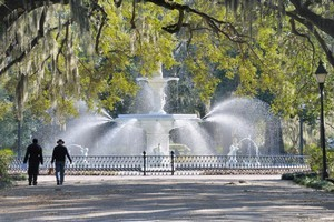 Moss-draped oaks, such as those in beautiful Forsyth Park, are common in Savannah. Photo / Thinkstock