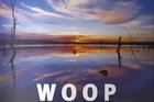Woop Woop South Eastern Australia Cabernet 2010, $16-$19. Photo / Supplied
