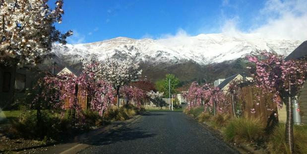 Fresh snow around Wanaka yesterday. Photo / Emma van Opzeeland
