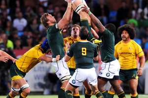 Eben Etzebeth, lifted high against the Wallabies last weekend, is a fast-rising young Springbok player.  Photo / Getty Images