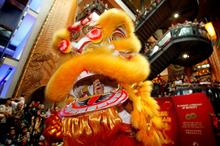 Lion dancing is on the list of activities Kiwis are turning to. Photo / Natalie Slade