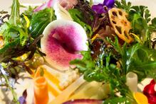Textured vegetable dish from Kazuya restaurant. Photo / Babiche Martens