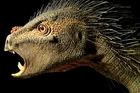 The Pegomastax africanus. Image / Tyler Keillor