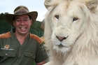 Lion Man Craig Busch poses with a very large lion. Photo / Supplied