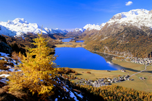 Autumnal colours in Switzerland's Upper Engadine Valley. Photo / Thinkstock