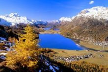 Autumnal colours in Switzerland's Upper Engadine Valley. Photo / Thinkstock