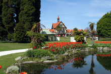 The tulips at Government Gardens in Rotorua. Photo / Rotorua Daily Post