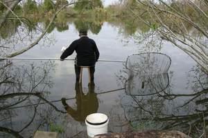 White baiting at the Kaituna river. Photo / APN