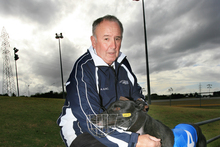 Huntley trainer Denis Schofield has qualified three finalists. Photo / Martin Sykes 