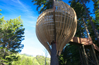 The Redwoods Treehouse has garnered worldwide attention for its innovation and design. Photo / Supplied