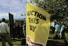 Have you been to a house auction?Photo / File