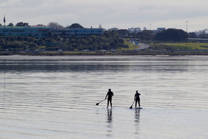 The proposed project would open up a 4km stretch of Shoal Bay coastline to the public and include a walkway and cycle path.  Photo / Richard Robinson
