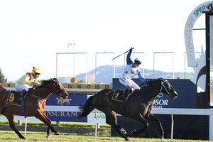 King Mufhasa (right) will try to repeat last year's effort in the Toorak Handicap at Caulfield today. Photo / Duncan Brown