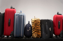 It always pays to make your luggage a bit distinctive. Photo / Thinkstock