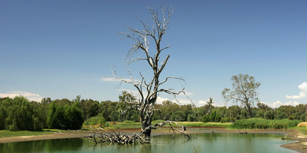 The Murray-Darling Basin's 77,000km of rivers feed farms that produce a third of Australia's food. Photo / Getty Images