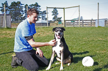 Emmett Skilton gets to know Chiko the dog at the SPCA. Photo / Supplied
