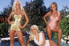 Playboy bunnies to help Hallenstein Brothers in promotional campaign. Photo / Supplied