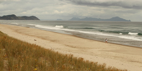 Te Arai beach near Mangawhai, where the Te Uri o Hau iwi hope to build a world class golf course with the help of US financier Ric Kayne.  Photo / Janna Dixon