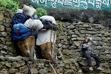 A Sherpa porter rests along side his heavy load on the Everest trail in the Solu Khumbu region, Nepal. Photo / Supplied