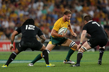 Scott Higginbotham of the Wallabies runs the ball during the Bledisloe Cup match. Photo / Getty Images