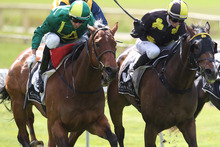 Aspinal (left) holds off Demophon to win the Lion Red Plate at Rotorua on Saturday. Photo / APN