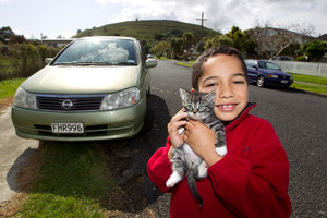Heleni Dawber, 6, says Axle is settling in well after his motorway adventure.. Photo / Steven McNicholl