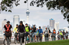 The Art Week cycle tours are a unique way to view Auckland's artistic treasures.