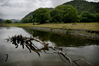 Tuhoe were not opposed to the creation of Te Urewera National Park, but wanted to remain on the last lands in the heart of the park. Photo / Greg Bowker