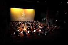 Auckland Philharmonia Orchestra. Photo / File 