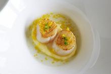 Michel Louws' scallops and lemon. Photo / Geoff Mason