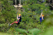 Strapped in and ready to go - EcoZip Adventures cater for eight to 88-year-olds. Photo / Supplied